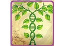 Girişimcilere biyoekonomik bir hedef: Gen