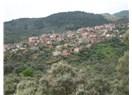 Aydın'da bir Köy Dağyeni