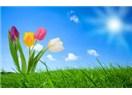 Hoş gelen Bahar