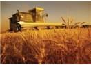 21. Yüzyıl'da Tarımımız nereye gidiyor-3