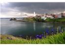 15 Mayıs 1856 Rumeli ve Anadolu Fenerleri İşletmeye başlandı.