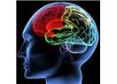 Öznel akıl mı, nesnel akıl mı?