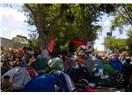 Rüyanın adı Gezi Parkı
