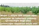 Çevrecinin daniskası diyor ki; 2 Milyar 800 Milyon ağaç diktik