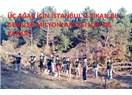 Üç ağaç için İstanbul'u yıkan bu gençler milyonlarcası için ne yapar?