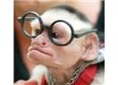 Trend Maymunları