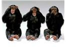 Basının metodolojisi, üç maymun