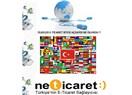 Ülkeler E-Ticaret Sitesi açsaydı ne olurdu ?