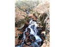 Yedigöller Milli Parkı ve Muhteşem Bir Doğa