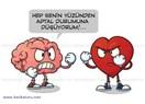 Yürek mi Akıl mı ?