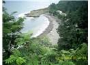 Belice; Timsah Adası