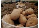 Patates 5 Lira olmuş iyi olmuş