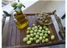 20 soruda zeytinyağı hakkında bilmeniz gereken herşey