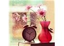 Günlüğüm, bir akşam vakti, fotoğrafçı için şiirce yalnızlık