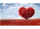 Aşk varken