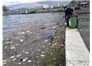İzmir Körfezi'nin çöpleri