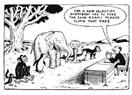 OECD raporlarından neler öğrendik ?