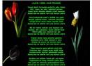 Kızıl Kule Ödülü ve Lale'm Şiirim