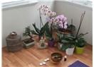 Doğuma hazırlık, yoga, aromaterapi denince annelere yardımcı bir yoga stüdyosu: Annezen/Mommazen
