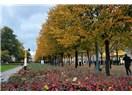 En güzel Sonbahar : Stockholm