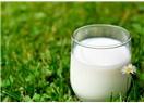 Kusursuz ve alternatifsiz bir besin; süt