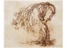 Kavak Ağacının Anneliği