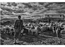 Istranca Yollarında -III- Bir Garip Çoban Amca.