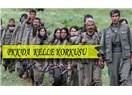 Batı dünyası Işid'e karşı kuyruğunu kıstıran PKK'ya karşı sessizliğini koruyor!