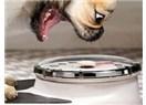 Kedi ve köpeklerde obezite hastalıkları