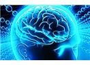 Beynin gizli sırları ve dünya