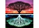 Yaşam Ağacı nedir? Neyin sembolüdür?