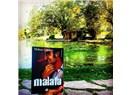 Bir Hakan Günday Romanı: Malafa