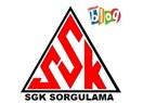 İsimden TC ile SSK Sorgulama ve SGK Hizmet Dökümü Prim İşlemleri