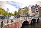 Amsterdam ve lâle bahçeleri