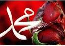 Mevlid Kandili tüm müslümanlar için hayırlı bir gecedir