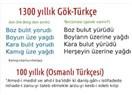 Osmanlıca mı? Osmanlı Türkçesi mi? Osmanlıda Türkçe mi? Bir dille felsefe yapmak, bilim üretmek