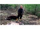 Kumluca'da 6 at ve 3 eşeği öldürdü. Sahibini tehdit etti.''Bu ilçede savcı da,hakim de benim' dedi