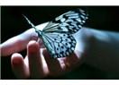 Özgürlük…