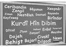 Bizi birleştiren, uzlaştıran Türkiye'dir, Türkçe'dir