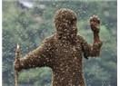 Eşek arısı soksun