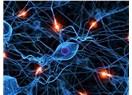 Nöral Tedavi nedir? Bozucu Alan Nedir? Nöral Terapi nasıl iyileştirir?
