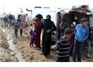 Suriye mültecilerinin bugünü ve yarını...