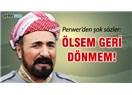 Kürt siyaset devrimi