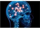 Hiç düşündünüz mü beyin nasıl yaratıldı?