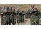 PKK düşmanımız değil mi? Türkiye akıl tutulması yaşıyor?