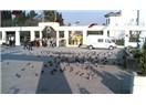 Bakırköy'ün gezilecek Tarihi ve Turistik yerleri
