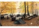 Yedigöller piknik parkı