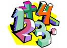 Matematik ve Siyaset