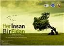 Haiku. B16: Fidan