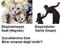 Türk usulü eğitim anlayışı; çocuklarımızı neden dövüyor, döverek hangi mesajı veriyoruz (2)